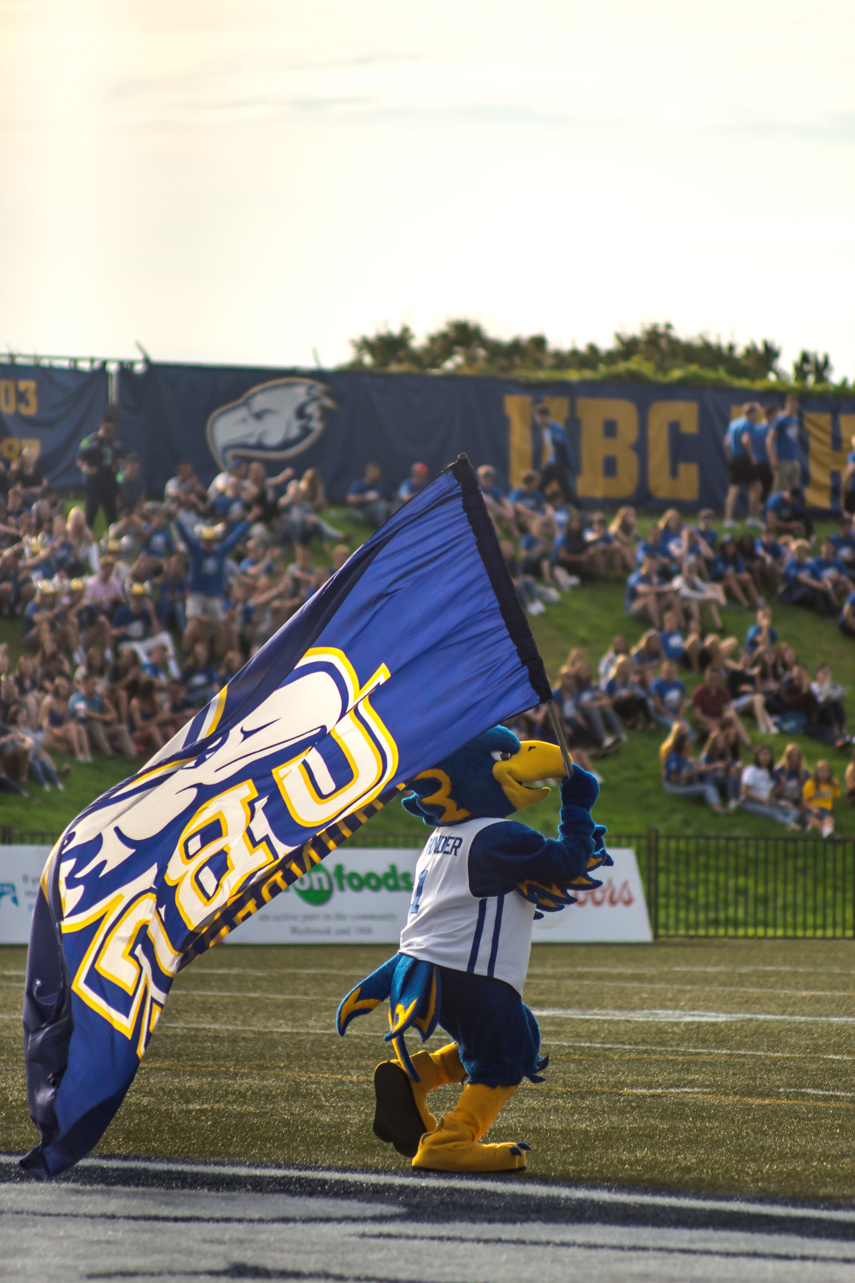The UBC Thunderbird mascot running across the field with a flag