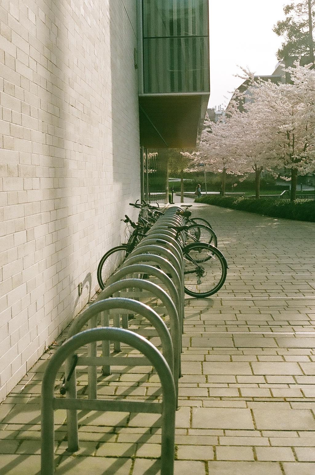 Robert H. Lee Alumni Centre bike racks
