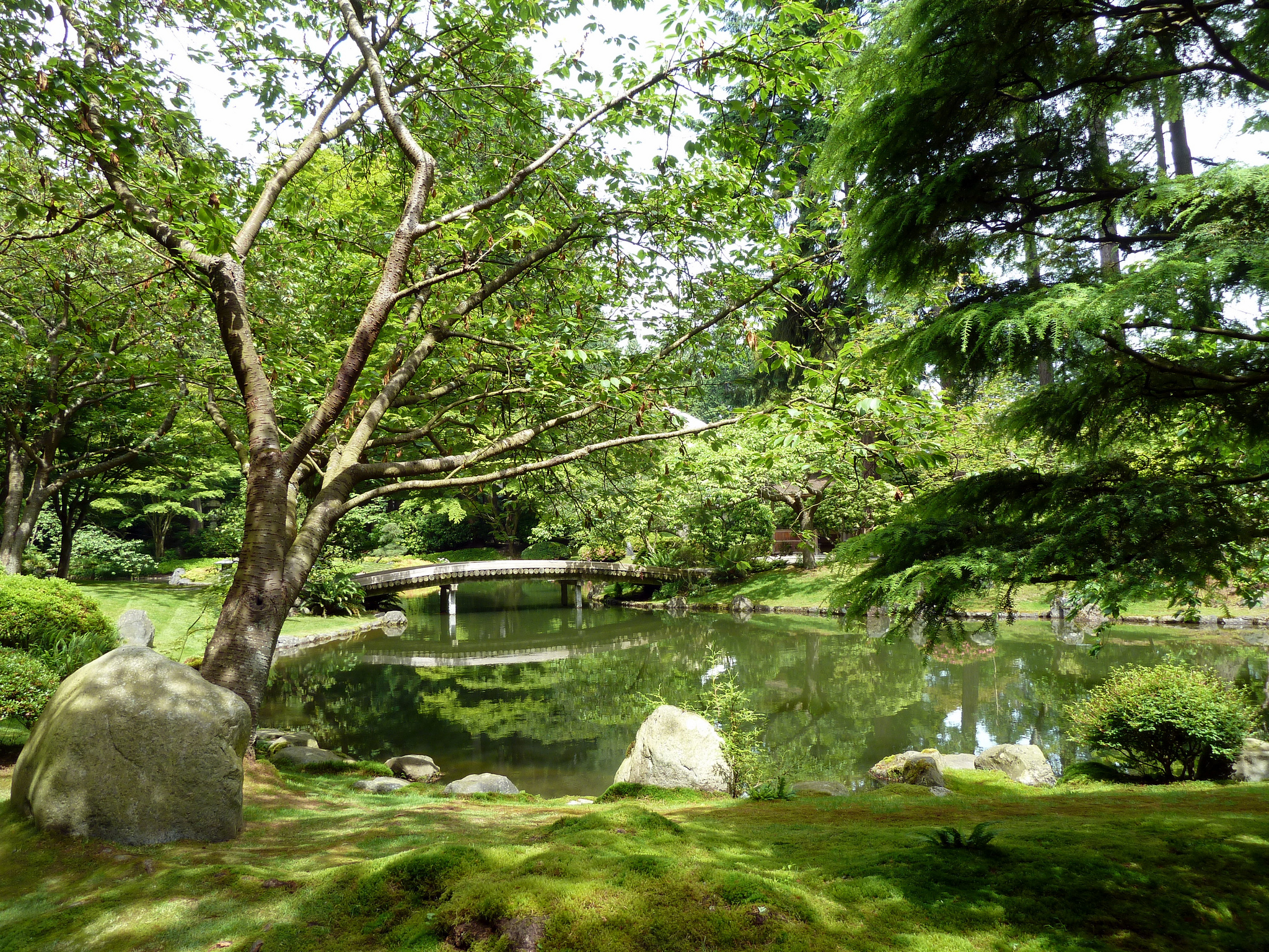 Nitobe Copyright Wendy Cutler