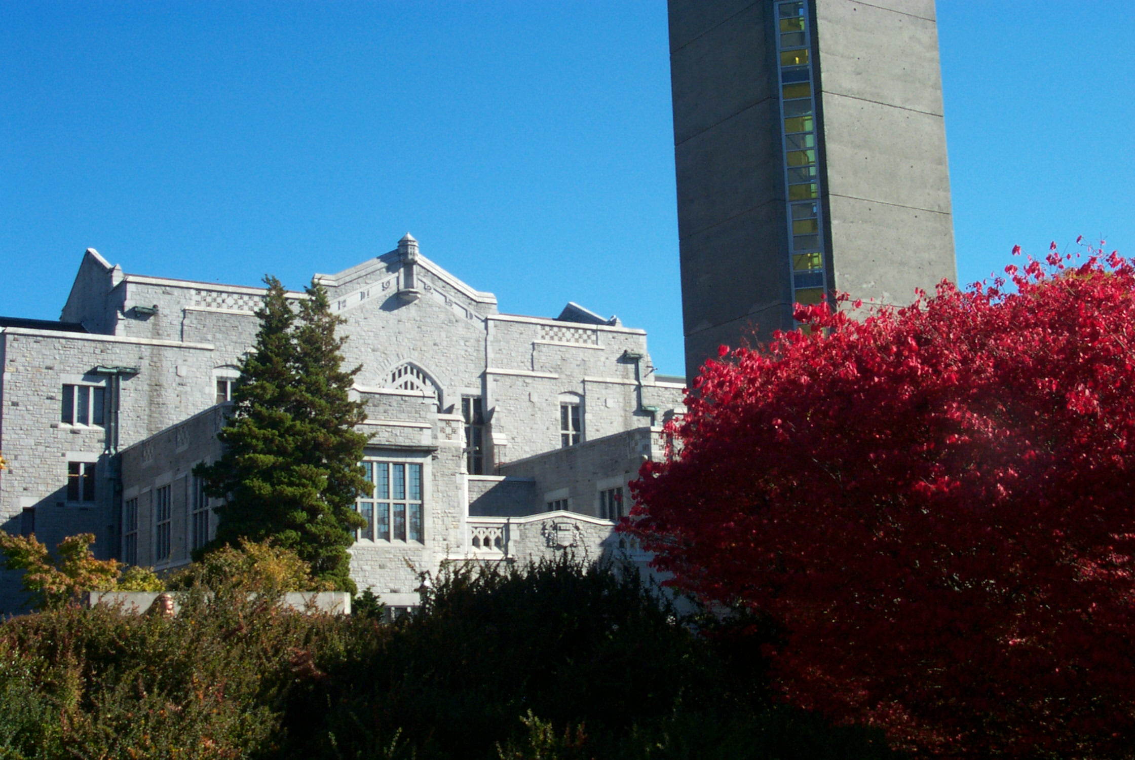 UBC library with fall trees