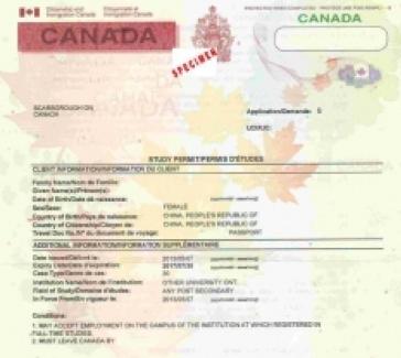 study permit sample