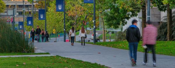 UBC students walking across UBC campus with fading light