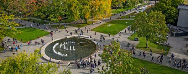 crowds around the fountain