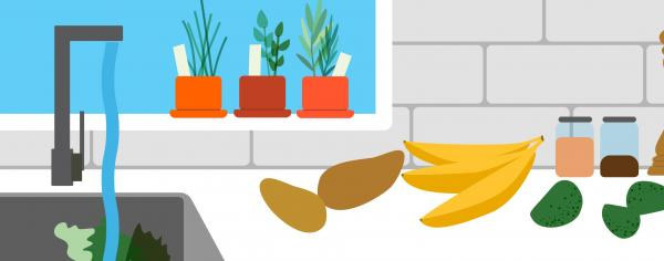 Illustration of a kitchen counter