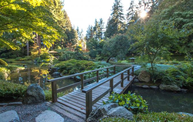 A bridge in Nitobe Garden at UBC.