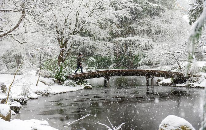 Nitobe Memorial Garden on a snowy day
