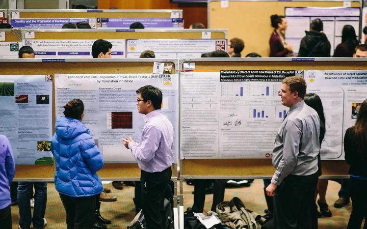Undergrad research