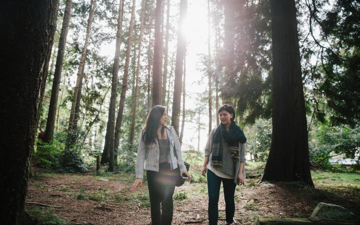 Two friends walking in a forested area on campus