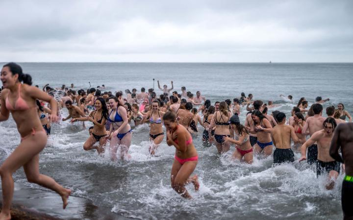 Polar Bear Swim 2017