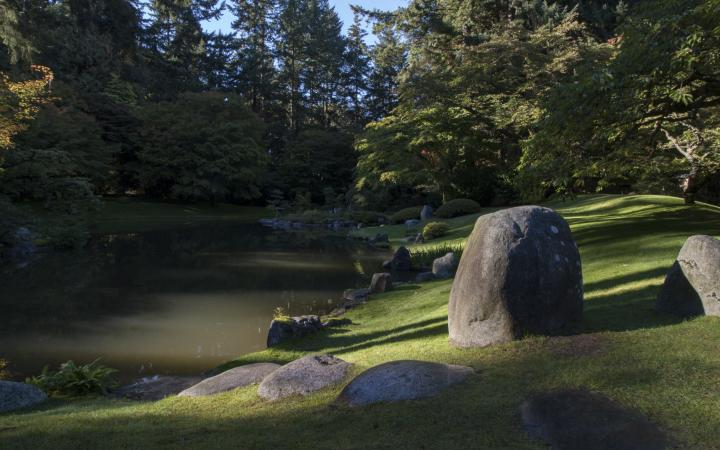 A photograph of a pond in Nitobe Gardens.