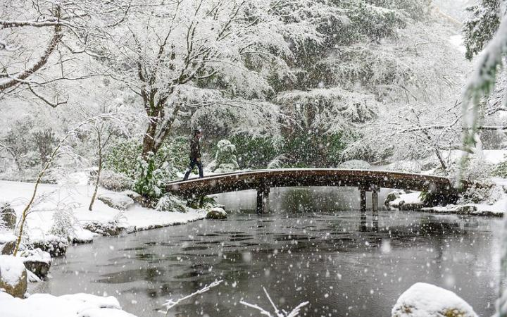 Snow covering Nitobe Garden at UBC.