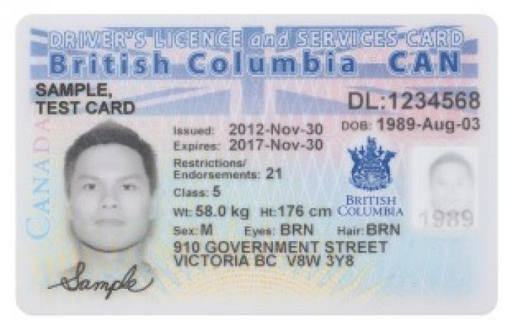 Bc Student Driving In Services