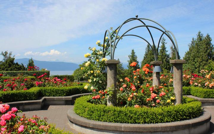A photograph of the Rose Garden at UBC Point Grey campus.