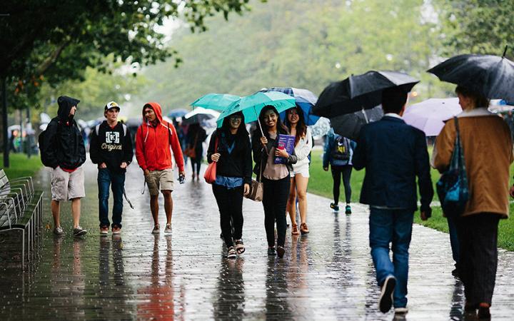 Imagine Day rainy