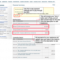 Screenshot of sample Financial Summary section of SSC