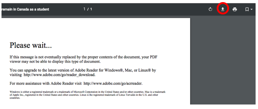 PDF download screenshot